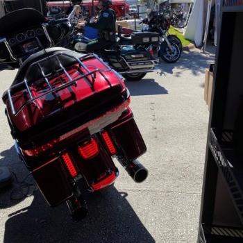 photo by Spring '21 - Daytona, FL