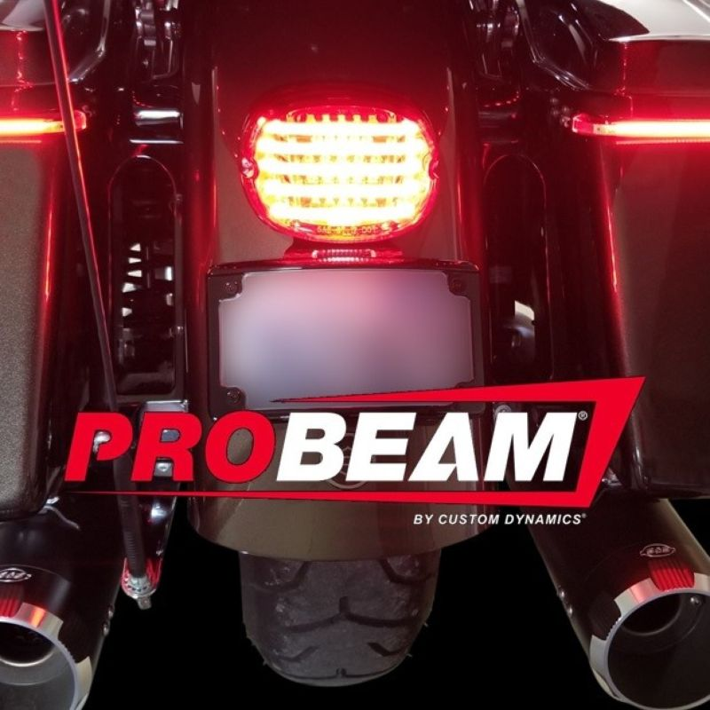 ProBEAM® Low Profile LED Taillight