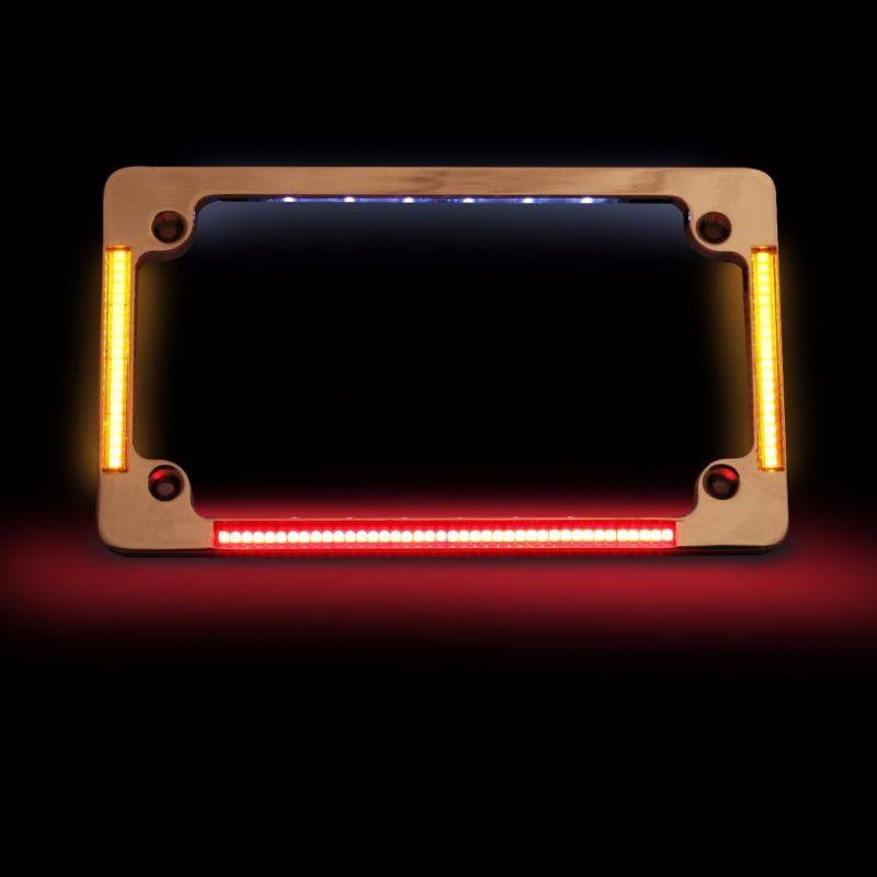 Quad Horizontal or Radius Motorcycle Plate Frame with Flushmount LEDs & Plate Illumination